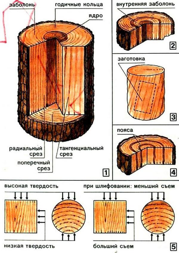 Фото чертеж мебели из бревна
