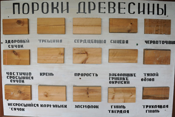 Фото дефекты древесины