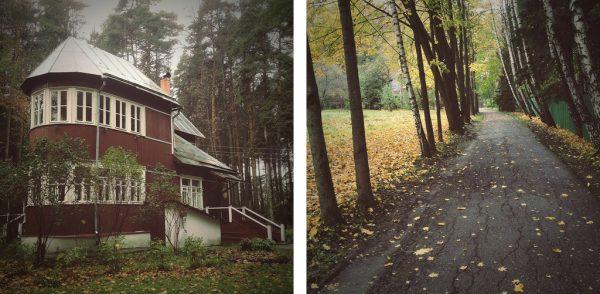 Как выглядит дом Ренаты Литвиновой