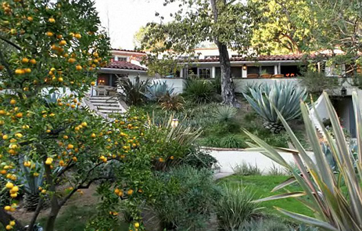 Шикарные дома Кэмерон Диас