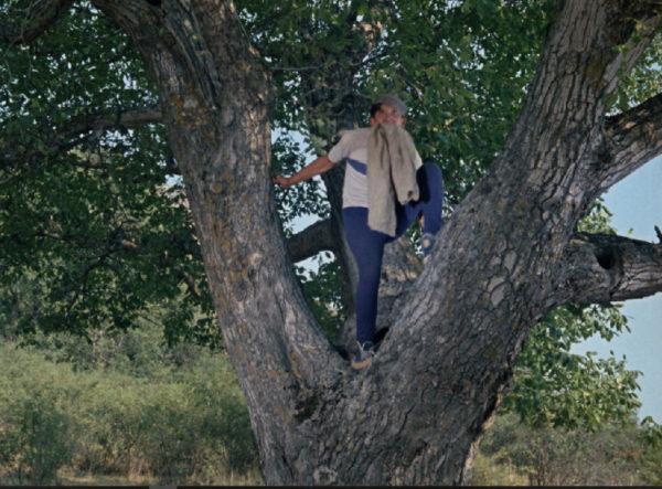"""Самые красивые места съемок """"Кавказской пленницы"""""""