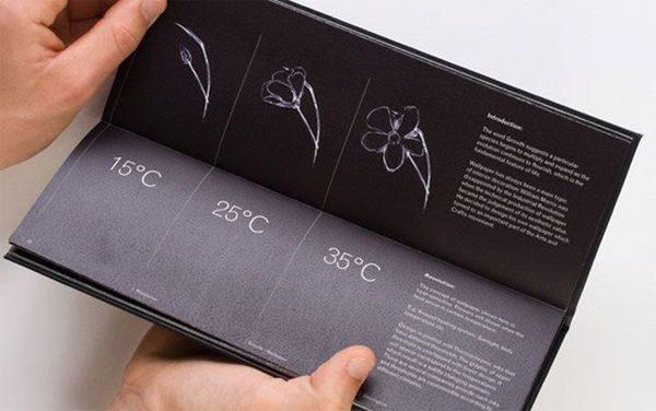 Тепловые обои: уникальная технология для вашего уюта
